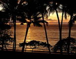 palm-cove-sunset.jpg